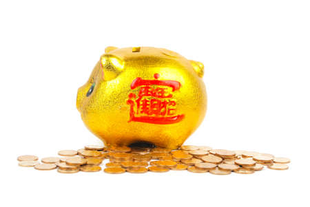 Piggy bank and coins Stock Photo - 13304613