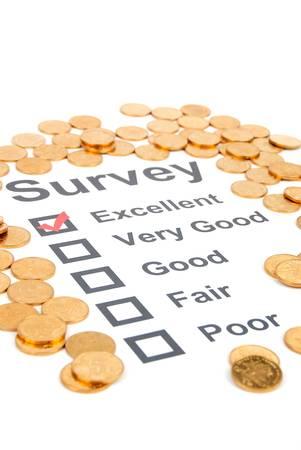 Survey Stock Photo - 13248094