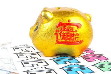Piggy bank and house Stock Photo - 13280040
