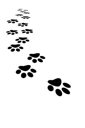 dog walking: Footprint
