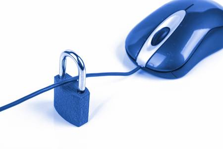 Information security Stock Photo - 13340453