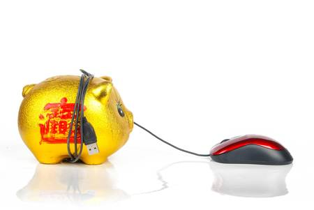 Piggy bank and Computer mouse Stock Photo - 13369505