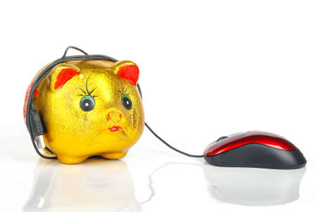 Piggy bank and Computer mouse Stock Photo - 13370967