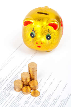 Coins with piggy bank on html page photo