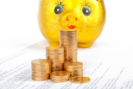 Coins with piggy bank on html page Stock Photo - 13560964