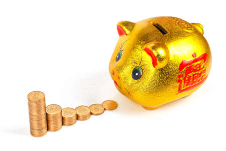 Piggy bank and coins on white background photo