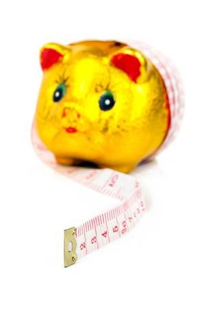 Piggy bank with ruler Stock Photo - 13763202