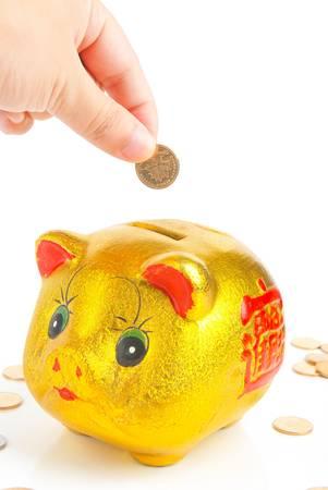 Piggy bank photo