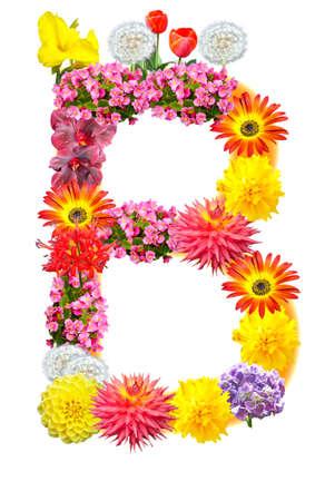 Flower letter Stock Photo - 13916517