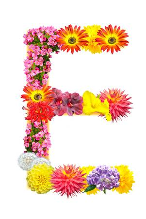 Flower letter Stock Photo - 13916484