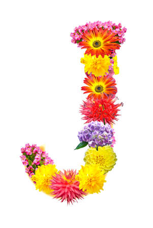 Flower letter Stock Photo - 13916403