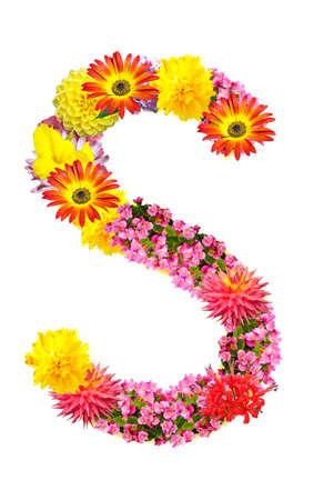 Flower letter Stock Photo - 13916471
