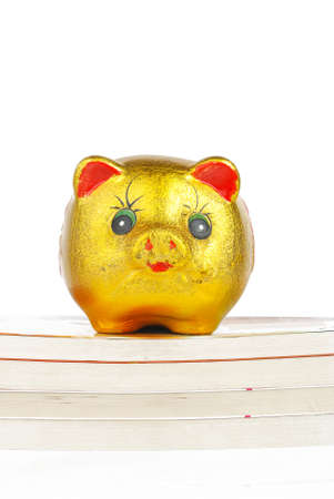 Piggy bank with book photo