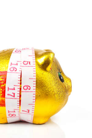 Piggy bank with ruler Stock Photo - 13979857
