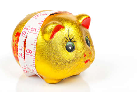 Piggy bank with ruler photo