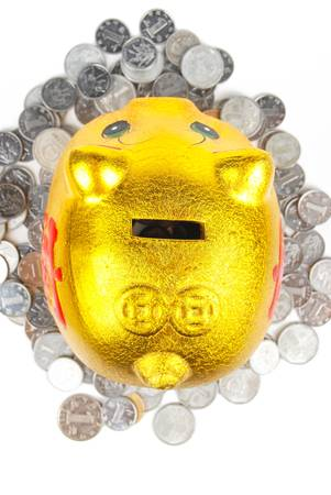 Piggy bank and coin Stock Photo - 14078615