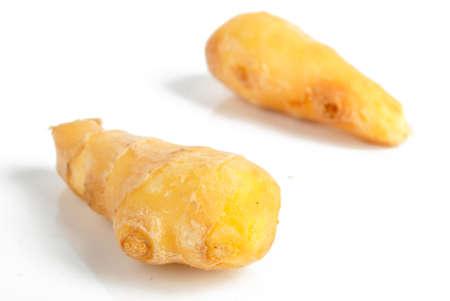 Ginger photo