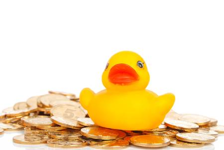 Rubber duck on coin photo