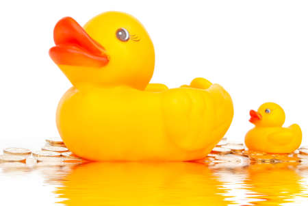 Rubber duck on water photo