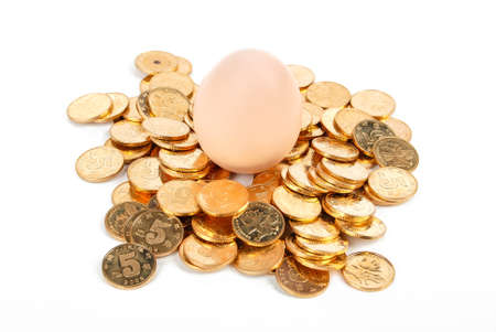 Egg with coin photo