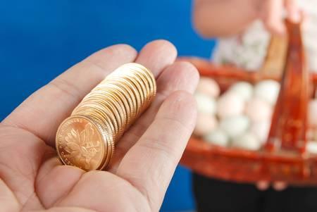 coins shot in golden color: Eggs