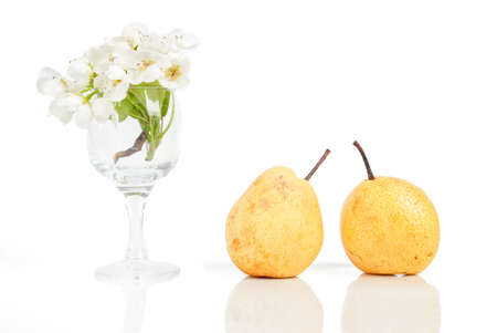 Pear and flower photo