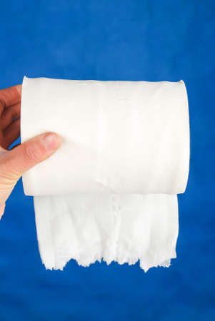 Toilet paper photo