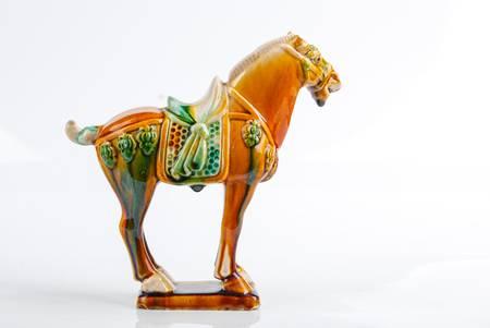 Horse Stock Photo - 14266384