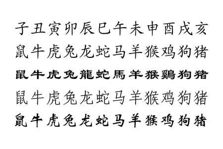 snake calligraphy: Chinese zodiac Stock Photo