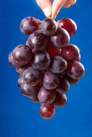 citrate: Grape