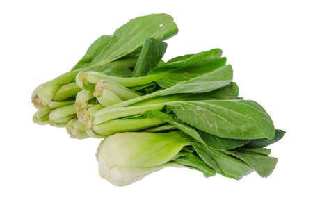 Bok chouyy Chinese cabbage  photo