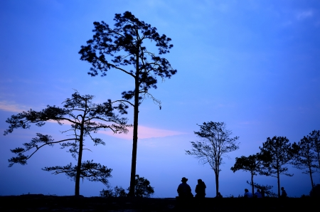 kradueng: Sunrise at Phu Kradueng National Park of thailand