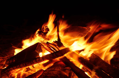 A fire burning wood in a fireplace Stock Photo - 25246212