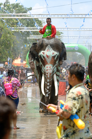 4-14-2017 Elephants have a splashing time during the Songkran Water Festival in ayutthaya Thailand