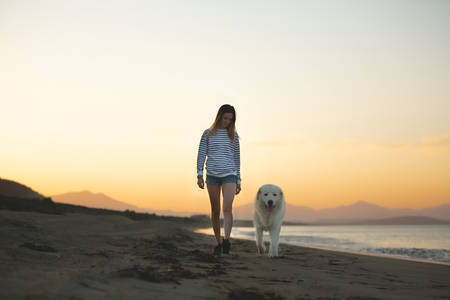 Portrait of Beautiful girl and happy maremmano abruzzese dog strolling on the beach. Young woman and Big fluffy white dog at sunset in summer Фото со стока