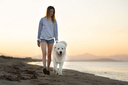Beautiful girl and happy maremmano abruzzese dog on the beach. Young woman and Big fluffy white dog at sunset in summer