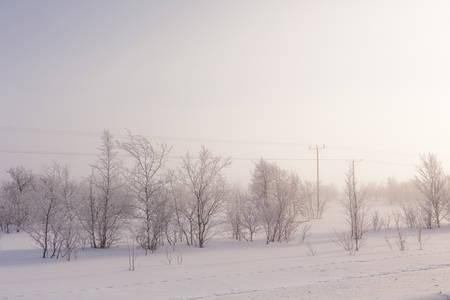 Scandinavian nature in winter above arctic circle