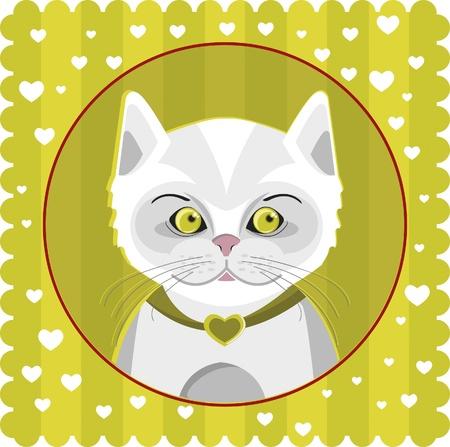 white kitten Stock Vector - 9723170