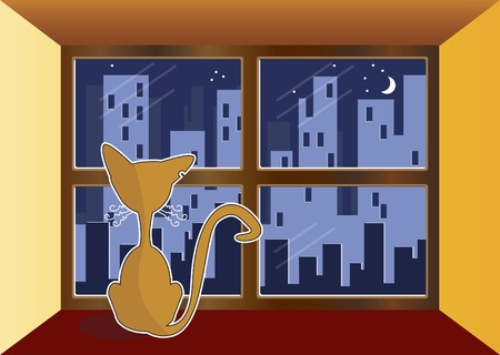 Cat in window. Cat out the window watching the city Stock Vector - 10031285