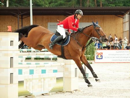 salto dello sport equestre