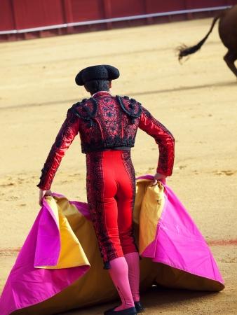matador: Matador in Ring met Bull