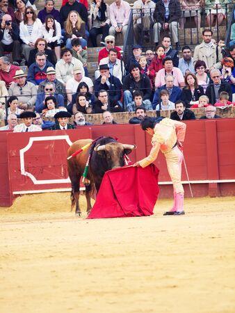 SEVILLA -MAY 20: Novilladas in Plaza de Toros de Sevilla. Novillero:Alvaro Sanlucar. May 20, 2012 in Sevilla (Spain) Stock Photo - 13790003