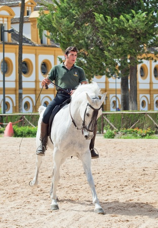 Jerez-17 MAY: rider on spanish white horse in The Royal Andalucían School of Equestrian Art on demonstration performance. May 17,2012 in Jerez, Spain