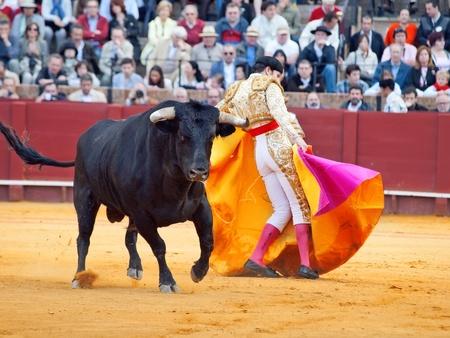 costum: SEVILLA -MAY 20: Novilladas in Plaza de Toros de Sevilla. Novillero: Emilio Huertas. May 20, 2012 in Sevilla (Spain)