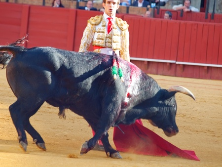 SEVILLA -MAY 20: Novilladas in Plaza de Toros de Sevilla. Novillero: Emilio Huertas. May 20, 2012 in Sevilla (Spain)  Stock Photo - 16943157