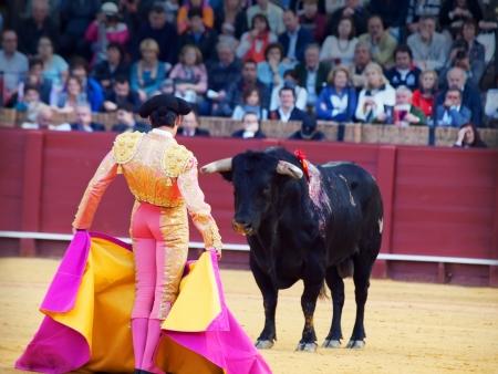 matador with bull face to face