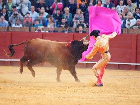 SEVILLA -MAY 20: Novilladas in Plaza de Toros de Sevilla. Novillero:Alvaro Sanlucar. May 20, 2012 in Sevilla (Spain) Stock Photo - 16972846