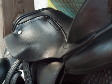 dressage saddle cropped. close yp