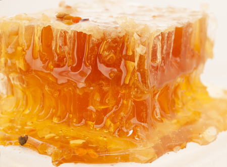 fresh Honeycomb and bee pollen. close up Stock Photo - 22727793
