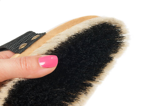 bristle: small  brush for grooming horses with hand  on white Stock Photo